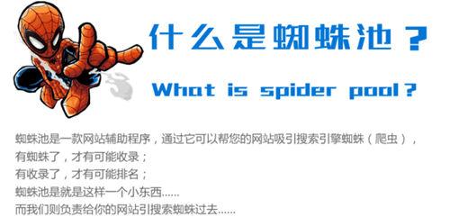 蜘蛛池是什么?百度蜘蛛池有什么用?